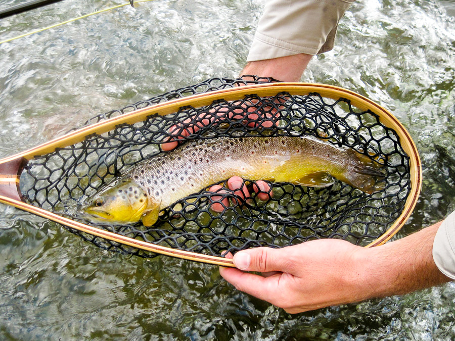 fly fishing the fall season