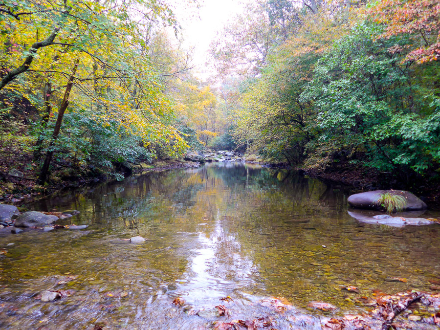 fall time on the Piney River in Virginia