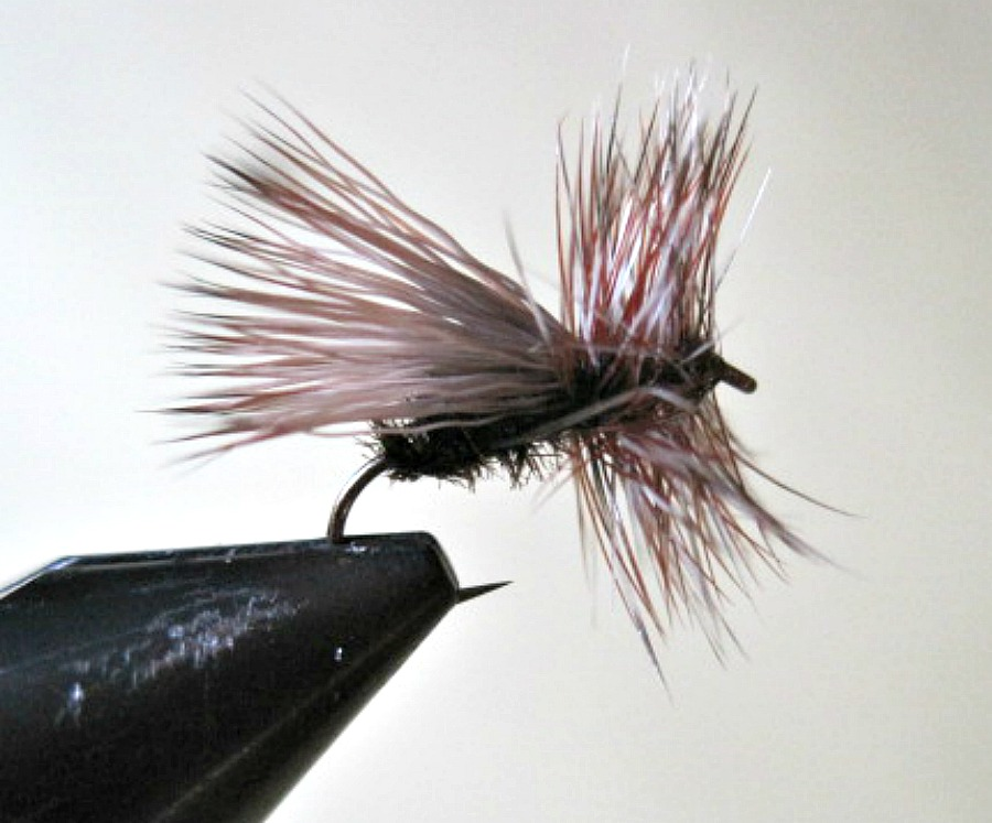 fluttering caddis fly pattern