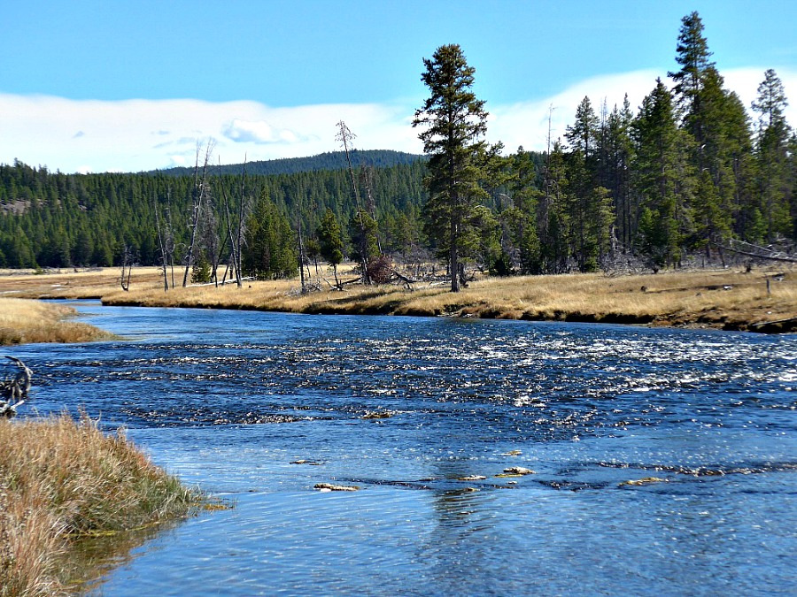 a riffle in the Firehole River, Yellowstone National Park