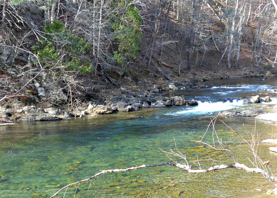 Virginia trout stream