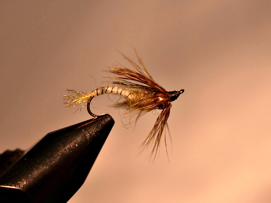 fly fishing emergers