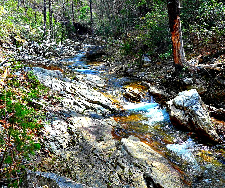 Blue Ridge trout streams