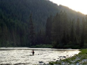 Fly Fishing Idaho