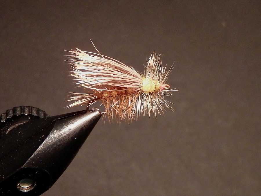 ten trout flies