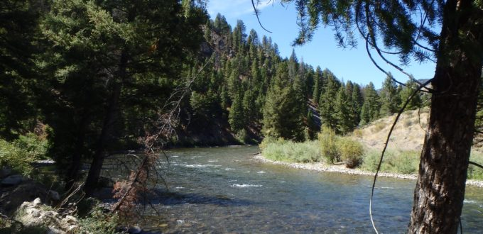 fly fishing central Idaho