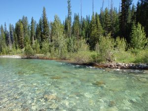 fly fishing the bob marshall wilderness