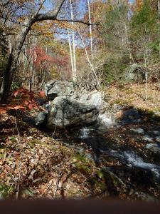 fall on Shoe Creek, Va.