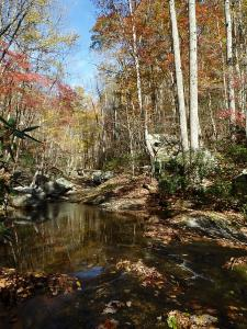 Shoe Creek in fall