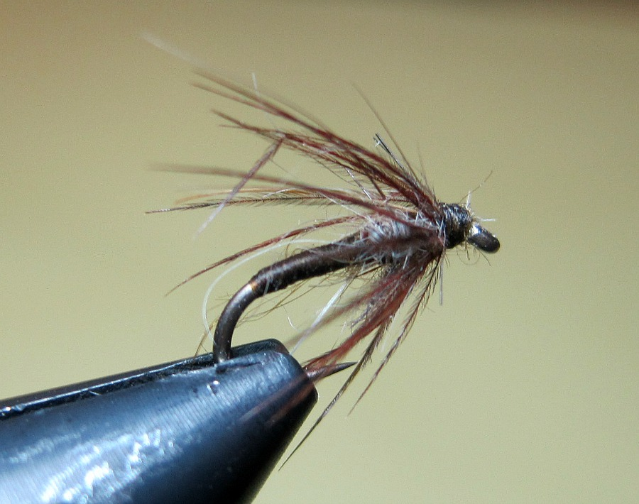 a soft hackle fly