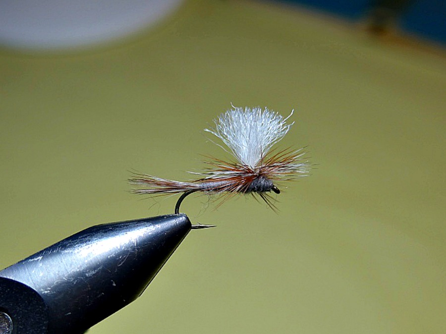 The Parachute Adams; an Attractor Fly for Everyone