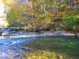 fall fishing fall