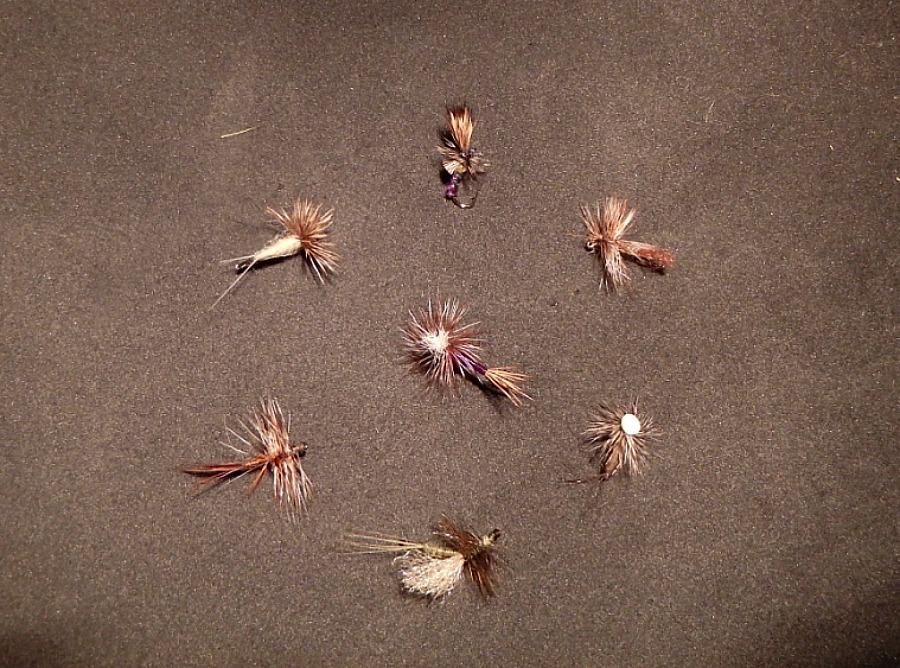 design of trout flies