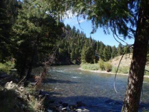 fly fishing central Idaho