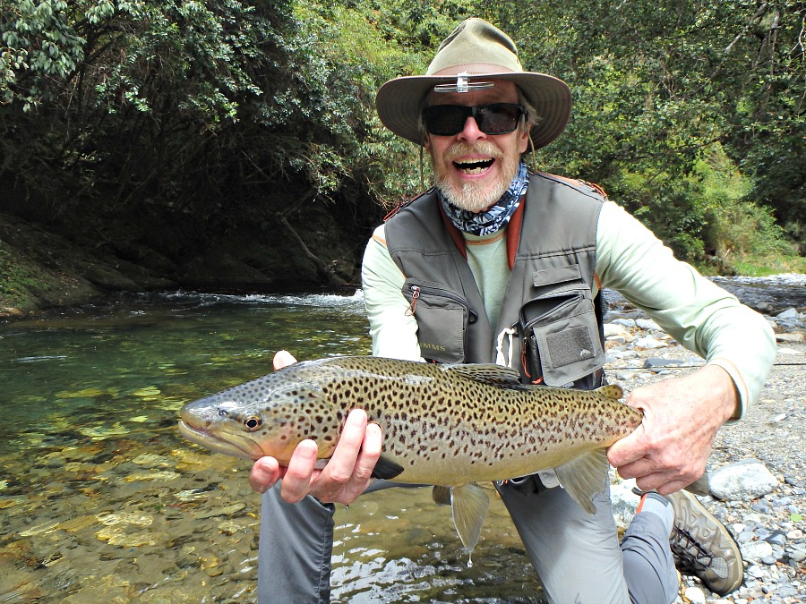 Fly Fishing for Brown Trout in Nelson NZ