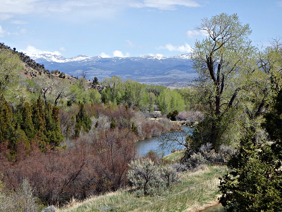 fly fishing Montana's spring shoulder